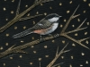 My Fettered Friends: Chickadee