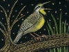My Fettered Friends: Meadowlark